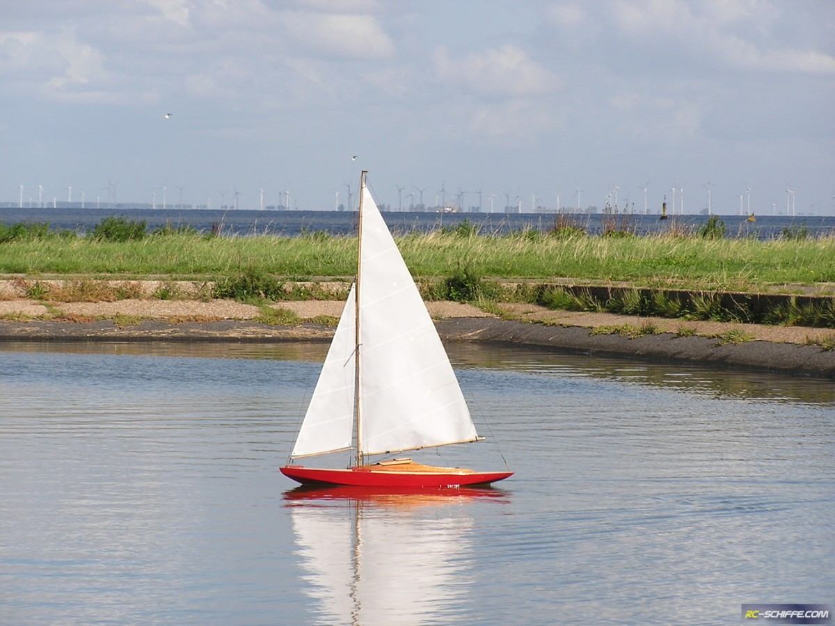 Seestern nach Artur Tiller